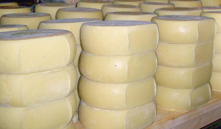 pirotski kackavalj sirevi